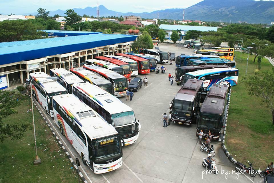 header bus