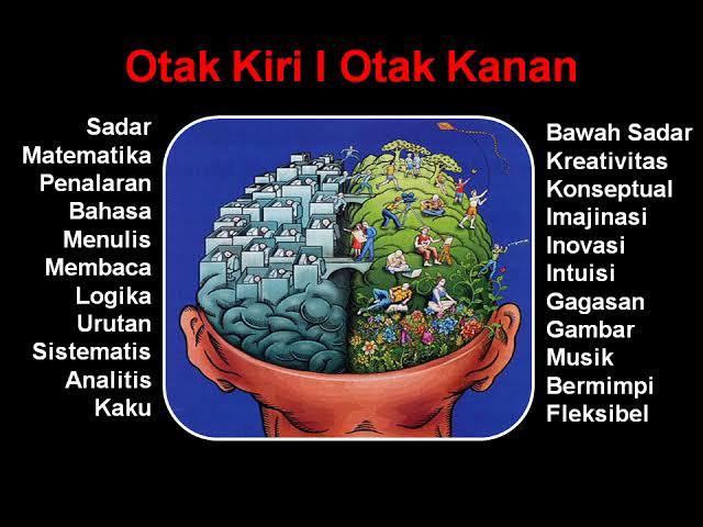 perbedaan-otak-kiri-otak-kanan